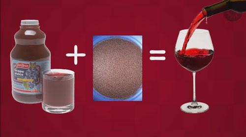 Recap---Ferment---2-Juice